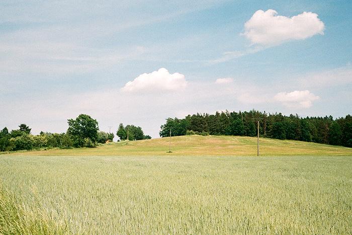 Výhled na pole a les